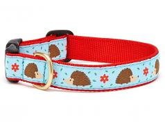 "Dog Collars: 5/8"" or 1"" Wide Hedgehog Clip Collar"