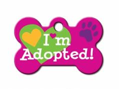 Engraved ID Tag:  Small Bone Shape I'm Adopted Pink