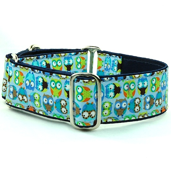 Dog Collars:  Hoot Blue 1.5""