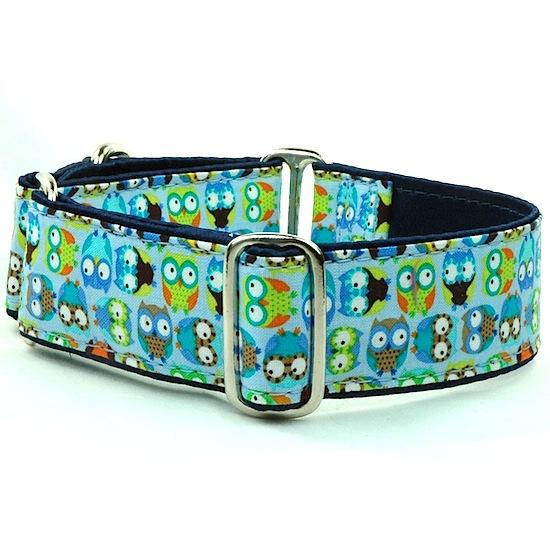 "Dog Collars:  Hoot Blue 1.5"""
