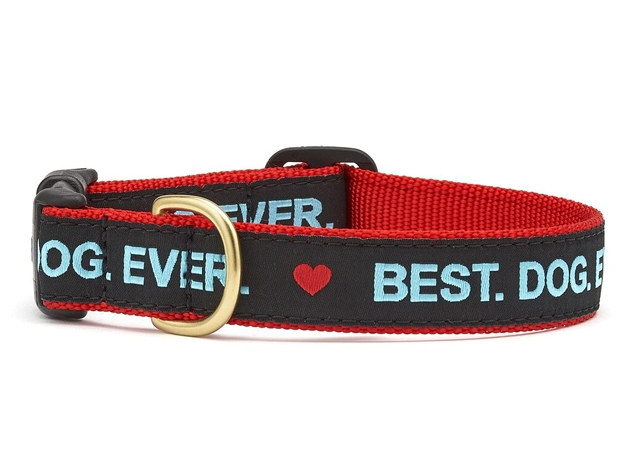 "Dog Collars: 5/8"" or 1"" Wide Best Dog Ever Collar"