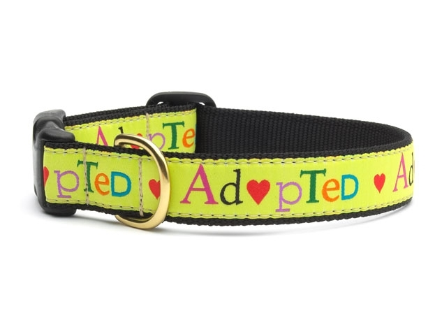 """Dog Collars: 5/8"""" or 1"""" Wide Adopted Clip Collar"""