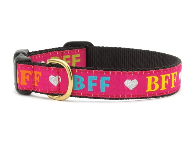 "Dog Collars: 1"" Wide BFF Clip Collar Medium ONLY"