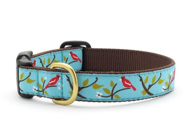 """Dog Collars: 5/8"""" or 1"""" Wide Cardinal Clip Collar"""