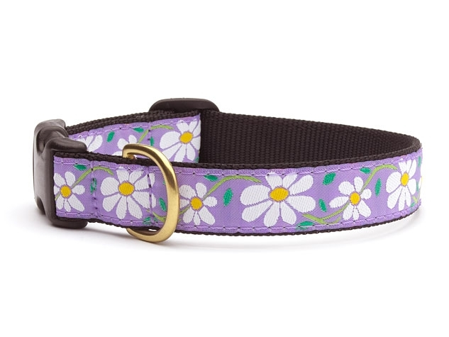 """Dog Collars: 5/8"""" or 1"""" Wide Daisies Clip Collar"""