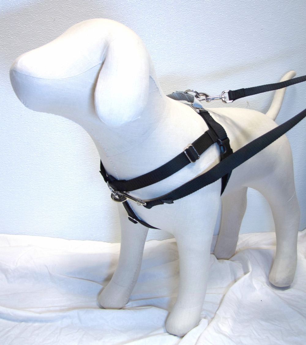BLACK Freedom No-Pull Harness with Silver Back Loop