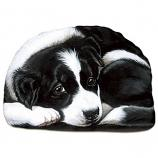 Pupper Weight Border Collie: Soft Weighted Fabric Beanie