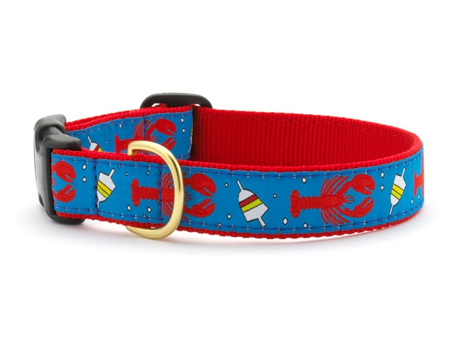 "Dog Collars: 5/8"" or 1"" Wide Lobster and Buoy Clip Collar"