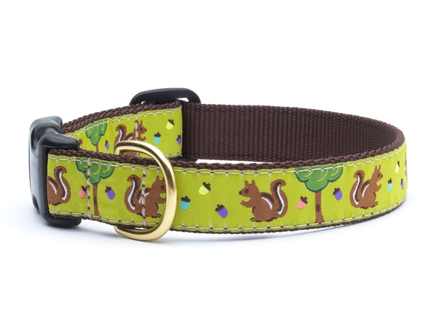 "Dog Collars: 5/8"" or 1"" Wide Nuts Clip Collar"