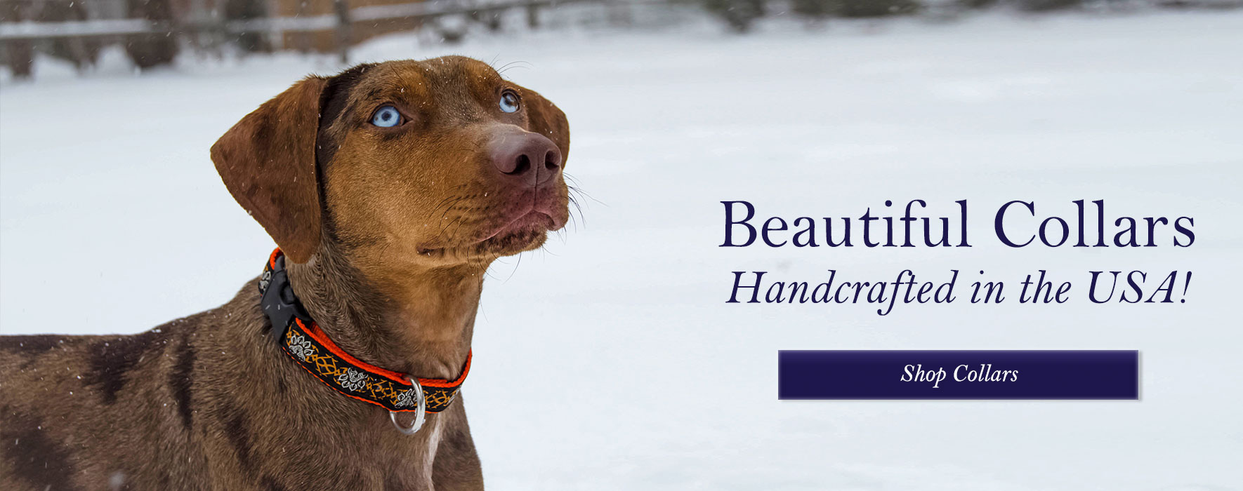 Shop Beautiful Collars
