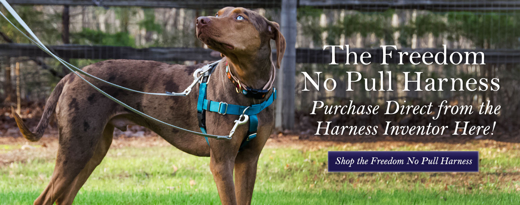 Shop the Freedom No Pull Harness